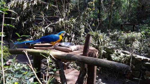 Tierpark Güiraoga